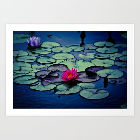 Twilight at the Lily Pond Art Print
