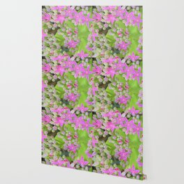 Hot Pink Succulent Sedum with Fleshy Green Leaves Wallpaper