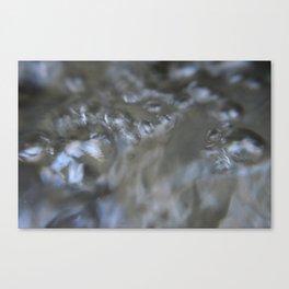 Oxy Canvas Print