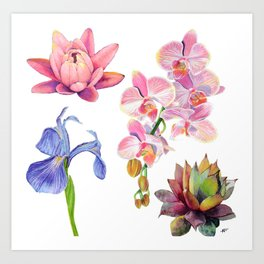 Flora and Fauna Pattern Art Print