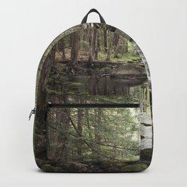 Mossy Brook Backpack