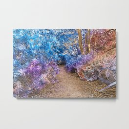 Fairy Tale Trail Metal Print