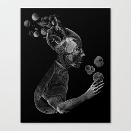 Acrobat Amaranth Canvas Print