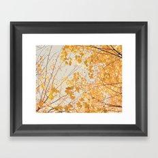 Autumn Orange Framed Art Print