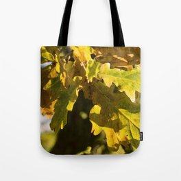 Autumnal Shades Tote Bag