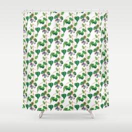 Australian Gumnuts Watecolour Shower Curtain