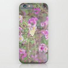 Earlybird iPhone 6s Slim Case