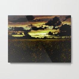 Dark Meadow Landscape  Metal Print