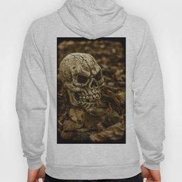 Halloween Skull 2 Hoody