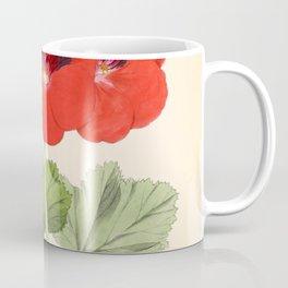 Pelargonium Edward Perkins Vintage Floral Scientific Illustration Coffee Mug
