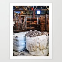 The New Shed Art Print