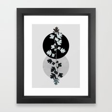 Geometry and Nature II Framed Art Print