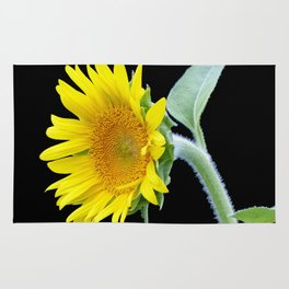 Small Sunflower Rug