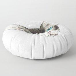 Hairless Cat Floor Pillow