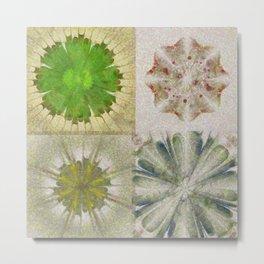 Grasshouse Configuration Flower  ID:16165-050526-69250 Metal Print