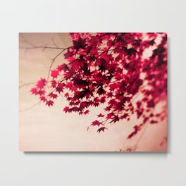 Red Fall Leaves Metal Print