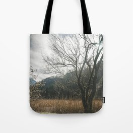 The big leafless tree Tote Bag