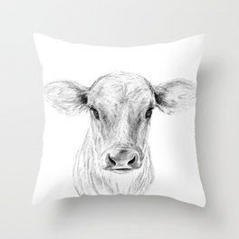 Moo ::  A Young Jersey Cow Throw Pillow