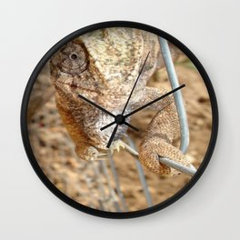 Chameleon Walking on A Wire Wall Clock