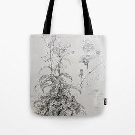 Sow Thistle (Sonchus asper) Tote Bag