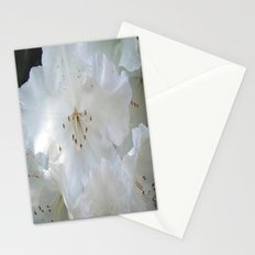 White Satin Stationery Cards
