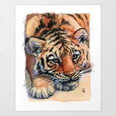 Resting Tiger Cub 896 Art Print