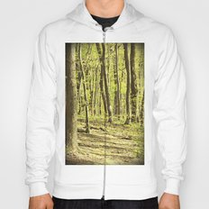 Follow the Right Path Hoody