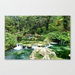 Waterfalls in Vanuatu Canvas Print