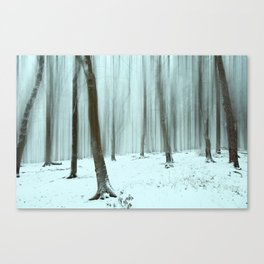 Abstract Winter Forest Canvas Print