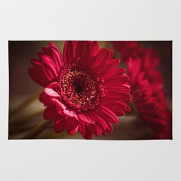 Red Gerbera II Rug
