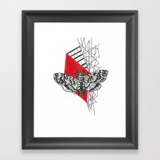 Hawkmoth Abstract Framed Art Print