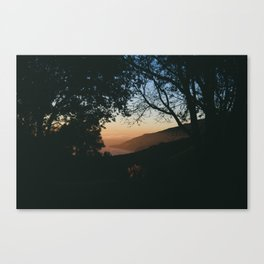 Sunset Between the Trees Canvas Print