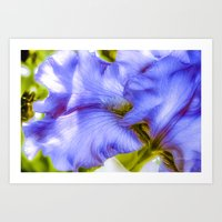 Lavender Flowing Iris Petals Art Print