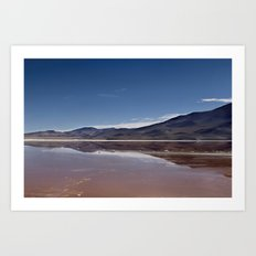 Natural mirror Art Print