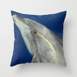 Making friends with a bottlenose dolphin Throw Pillow