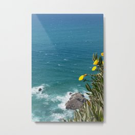 the earth ends and sea beggins Metal Print