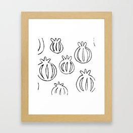 Poppy Seed Heads Illustration Framed Art Print