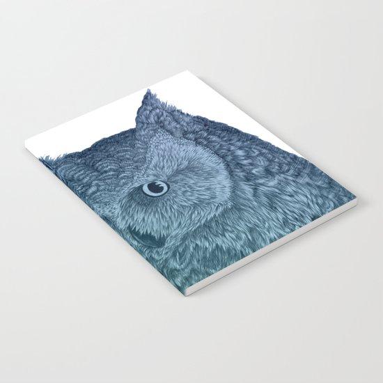 Ombre Owl II Notebook