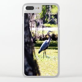 Stalking the Great Blue Heron Clear iPhone Case