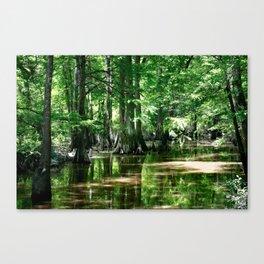 Honey Island Swamp Canvas Print