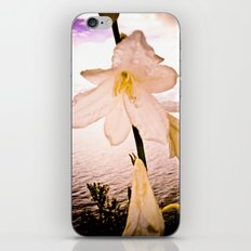 FLOWER IN THE IMMENSITY iPhone & iPod Skin