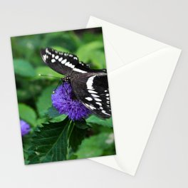 Butterfly on a Blue/Purple Flower Stationery Cards