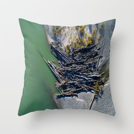 Aerial Study 3 Throw Pillow