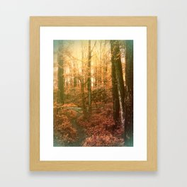 Fall in Kentucky, USA Framed Art Print