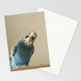 Budgie Stationery Cards