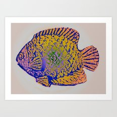 Sunfish Colors 2 Art Print