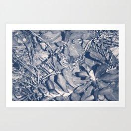 Fly Away-black&white Art Print