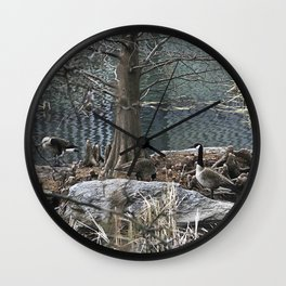 Ducks Wall Clock