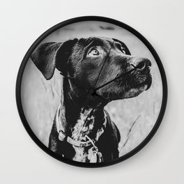 Wheatfield Dog Portrait // Sharing Memories with A Best Friend Such Amazing Eyes Wall Clock