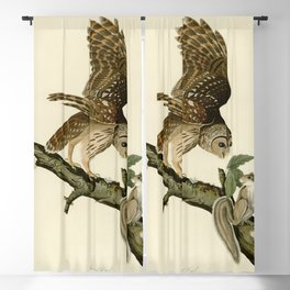 46 Barred Owl Blackout Curtain